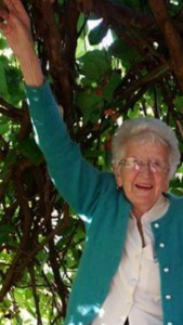 97yo Nanna thrives on BeeBiotics. And these mulberries she pinched from the park!